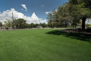 artificial turf soccer field under large tree